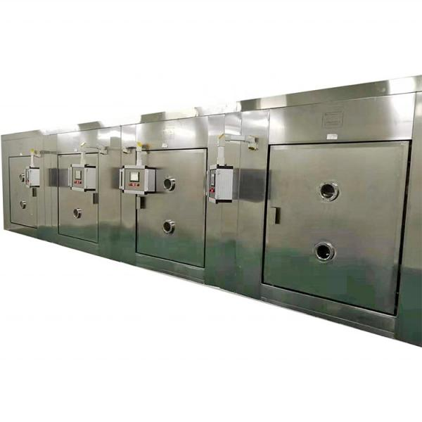 Yellow meal worm Barley insects Tunnel continuous industrial microwave dryer and sterilization machine #1 image