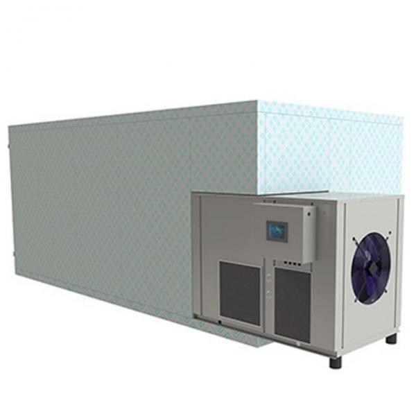 Yellow meal worm Barley insects Tunnel continuous industrial microwave dryer and sterilization machine #2 image