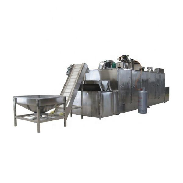 Fully automatic Belt Factory Applicable Industry hemp biomass dryer #1 image