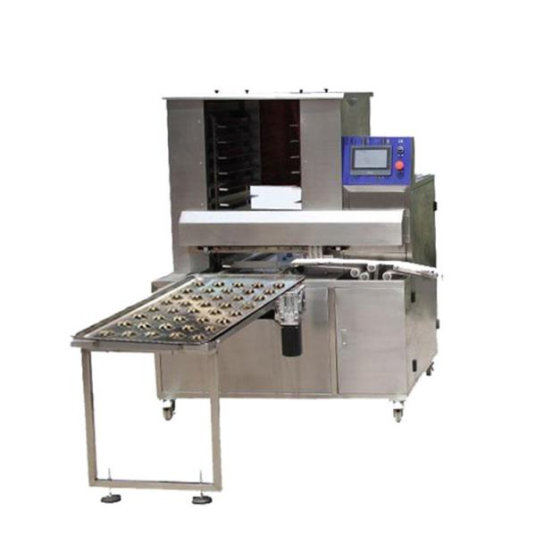 Double Color Cookie Biscuit Machine/Production Line #2 image